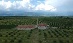 aerial view of mestvireni