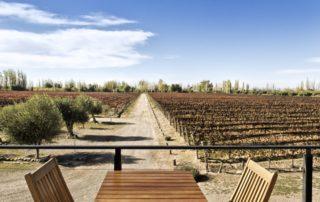 mevi tables for wine tasting sessions against lush vineyards