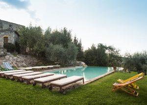 Swimming Pool At Monteraponi Winery