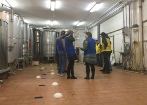 Bodega Berroja workers standing in front of wine tanks in Spain