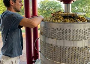 A Man Working On A Pressing Machine At Poggio Cagnano Winery