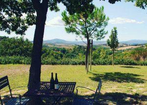 Tasting Area At Poggio Cagnano Winery