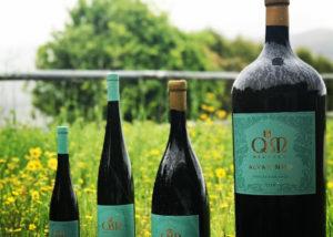 Wine bottles displayed infront of the Quintas de Melgaço winery garden
