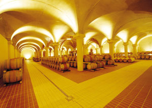 Cellar Of San Fabiano Calcinaia Winery