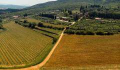 Aerial View Of Tenuta Di Trecciano Winery