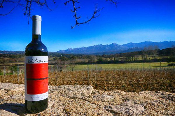 A Bottle Of Wine By Tenuta Muscazega Winery On Ground