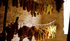Drying Grapes At Tenuta Valdipiatta Winery