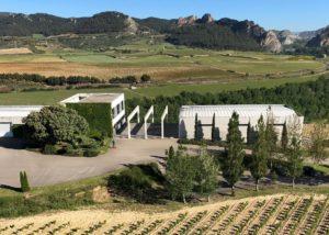 Tobelos vineyard whole landscape in Spain