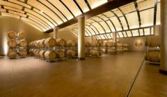 Cellar Of Vallepicciola Winery