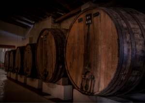 vasija secreta large wooden barrels for the wine production in the cellar
