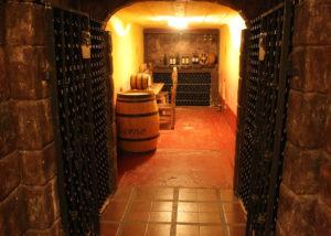 viña el cerno unique old wine cellar full of wine bottles on shelves