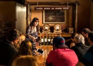 viña el cerno wine tasting session in the beautiful tasting room
