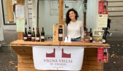 Wine Shop Of Vigna Villae In Taurasi Winery