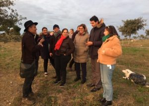 people visiting vineyards of villa baulieu