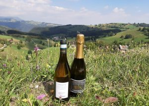 Two Bottles Of Wine At Vini Casarotto Winery