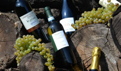 Bottles Of Wine By Vini Casarotto Winery On Wooden Log
