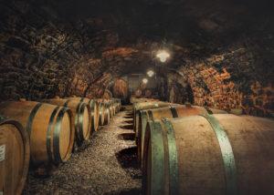 cellar of weingut georg naegele