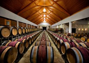 Barrels inside the celllar room of Weingut Umathum winery