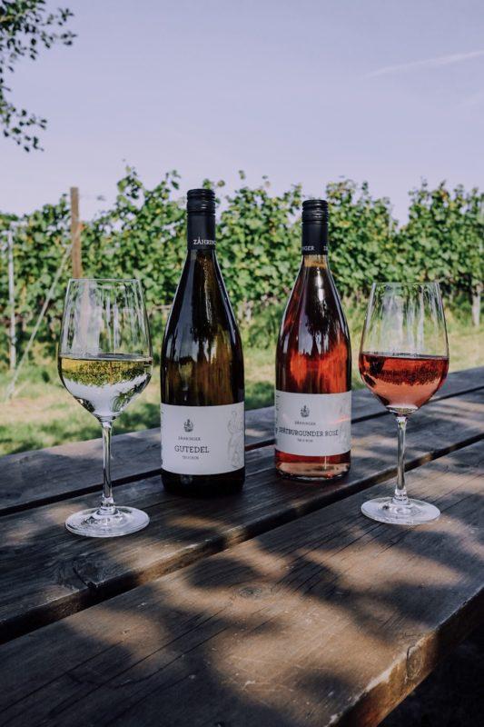 Wine Tasting at Weingut Zahringer