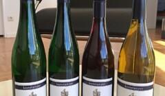 A Range of Weingut Konstanzer Wine Bottles