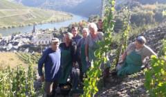 Winery team posing in the vineyard of Zum Eulenturm winery
