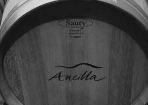 Barrel of Ancilla Azienda Agricola La Ghidina