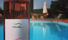 Ancilla - AziA bottle of wine near the swimming pool area ofenda Agricola La Ghidina