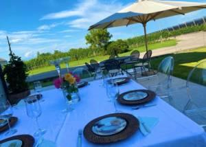 Wine tasting at Ancilla - Azienda Agricola La Ghidina