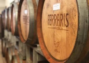 Barrels At Azienda Agricola Luca Ferraris Winery