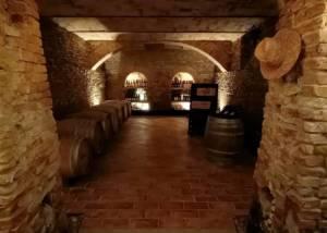 Cellar Of Ca 'D Tantin Organic Wines Winery