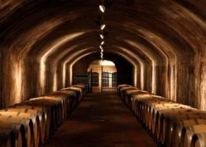 Cellar Of Castello Di Spessa Winery