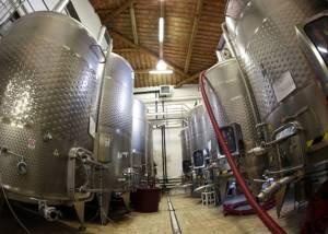 Cellar Of Castello La Leccia Winery