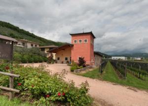 Estates of Corte Figaretto