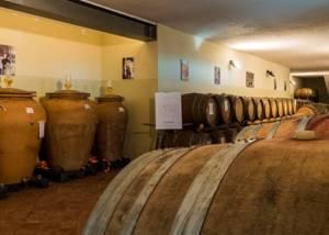 Cellar Of Ettore Germano Winery