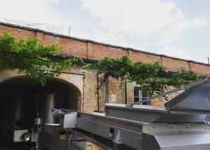 Building Of Marchesi Alfieri Winery