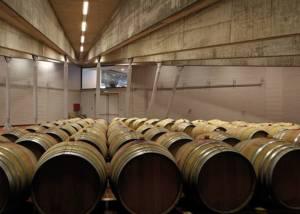 Barrels At Monte Delle Vigne Winery