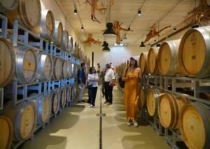 Barrels At Tenuta Casadei Winery