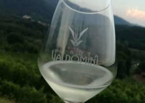 a glass of wine by Tenuta Valdomini S.Agricola