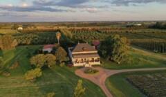 Aerial View Of The Bodega Familia Deicas Winery