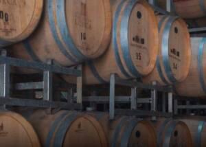 Barrels at Bodega Foster Lorca Winery