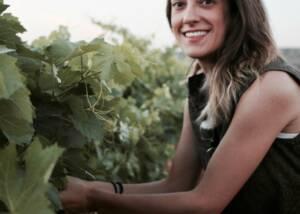 Vineyard at Bodegas Antonio Canaveras Winery