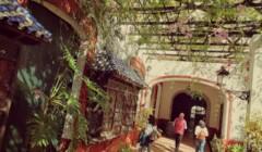Beautiful Outdoor Area At Bodegas Hidalgo La Gitana Winery