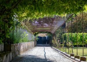 Garden of José Maria Da Fonseca Manor House