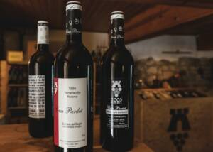 Wine Bottles of Casa Pardet