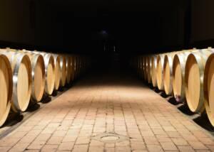 barrels lined up in row at the cellar of Castello del Terriccio