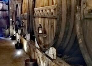 Cellars at Douro Best