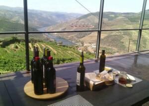 Wine Tasting Area at Douro Best