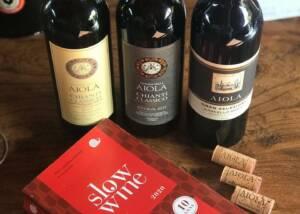 Wine tasting at the Fattoria Della Aiola winery