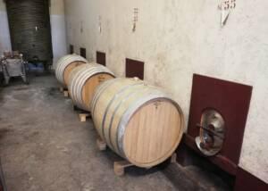 barrels at the cellar of fattoria montereggi