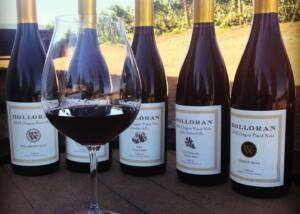 Wine Tasting At Holloran Vineyard Wines